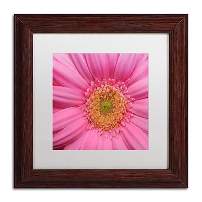 Trademark Fine Art KS0158-W1111MF