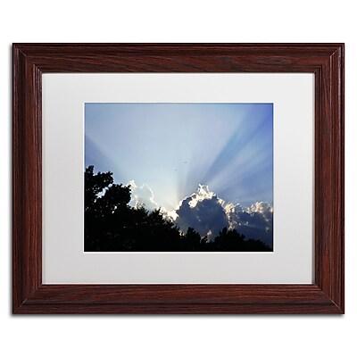 Trademark Fine Art KS0167-W1114MF