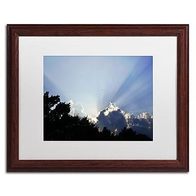 Trademark Fine Art KS0167-W1620MF