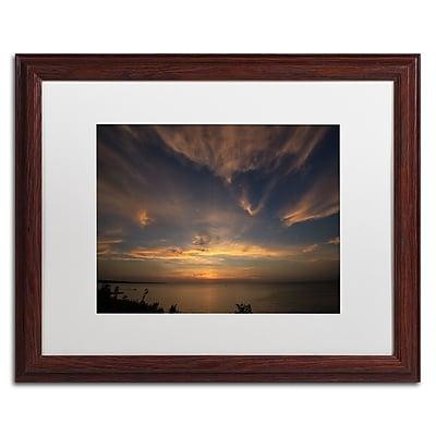 Trademark Fine Art KS0168-W1620MF