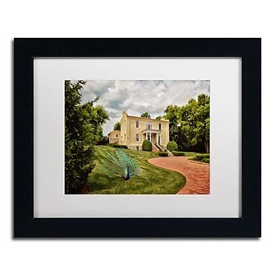 Trademark Fine Art LBR0235-B1114MF