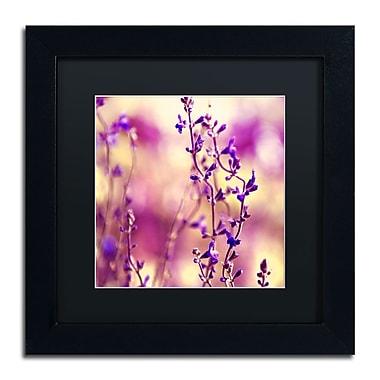 Trademark Fine Art BC0145-B1111BMF