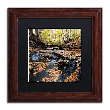 Trademark Fine Art KS0140-W1111BMF