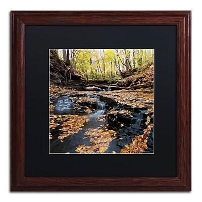 Trademark Fine Art KS0140-W1616BMF