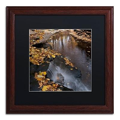 Trademark Fine Art KS0141-W1616BMF