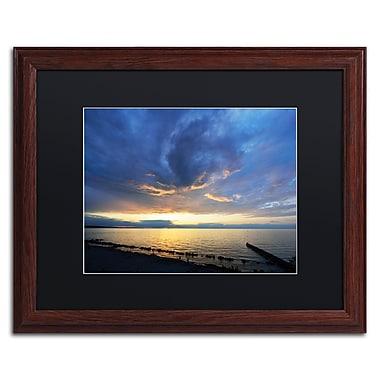 Trademark Fine Art KS0149-W1620BMF