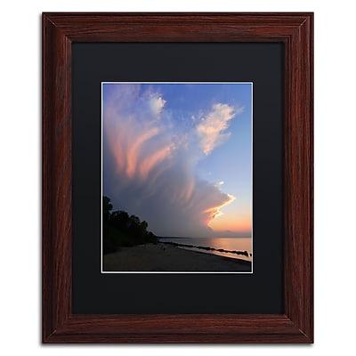 Trademark Fine Art KS0150-W1114BMF