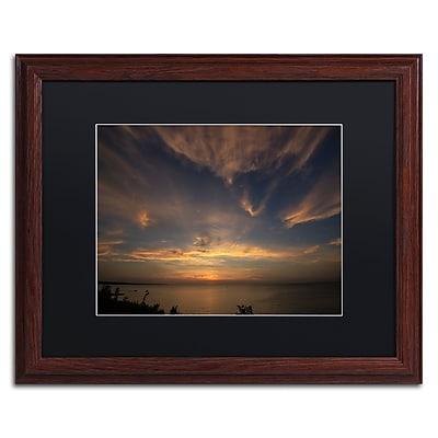 Trademark Fine Art KS0168-W1620BMF