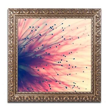 Trademark Fine Art BC0127-G1111F