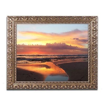 Trademark Fine Art BC0138-G1114F