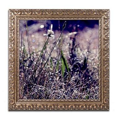 Trademark Fine Art BC0142-G1111F