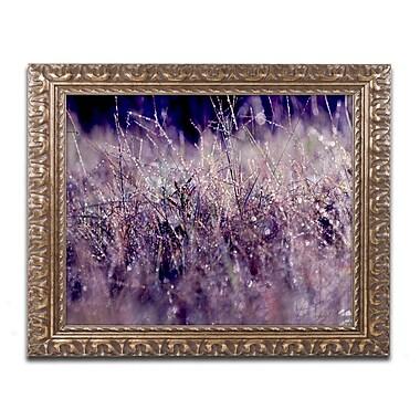 Trademark Fine Art BC0143-G1620F