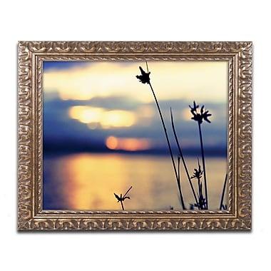 Trademark Fine Art BC0150-G1114F