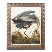 "Trademark Fine Art BL01276-G1620F ""Great Blue Heron"" by John James Audubon 20"" x 16"" Framed Art"