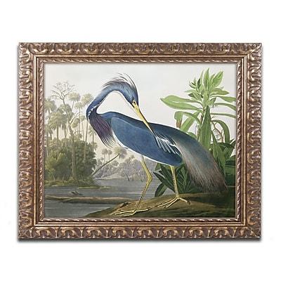 Trademark Fine Art BL01281-G1620F