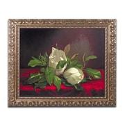 """Trademark Fine Art BL0539-G1620F """"Magnolia"""" by Martin Heade 16"""" x 20"""" Framed Art"""