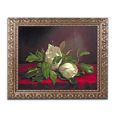 Trademark Fine Art BL0539-G1620F