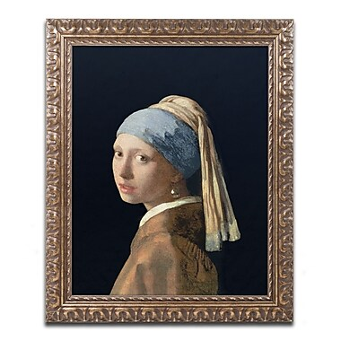 Trademark Fine Art BL0613-G1620F