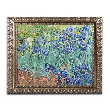 Trademark Fine Art BL0317-G1620F