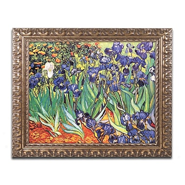 Trademark Fine Art M229-G1620F
