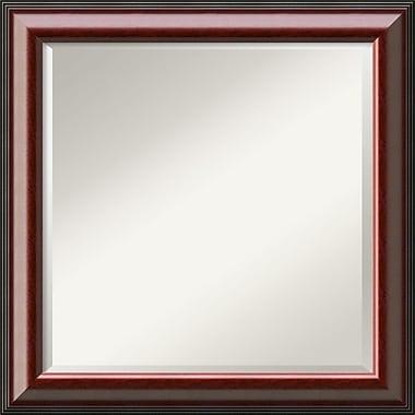 Amanti Art Cambridge DSW1290260 Wall Mirror 24.5