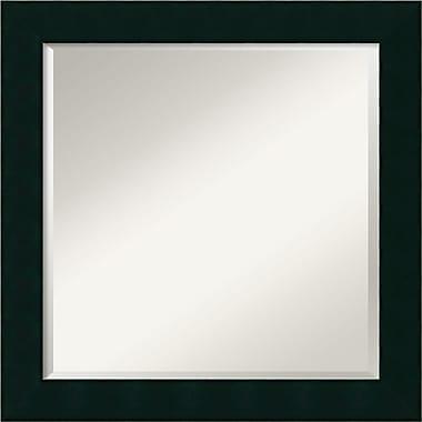 Amanti Art Tribeca Wall Mirror, 24.25