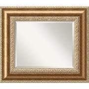 "Amanti Art Vienna DSW1290276 Wall Mirror 24.75""H x 28.75""W, Bronze"