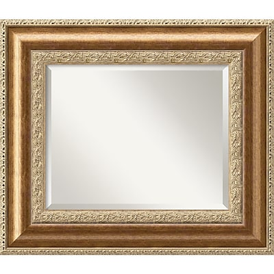 Amanti Art Vienna DSW1290276 Wall Mirror 24.75