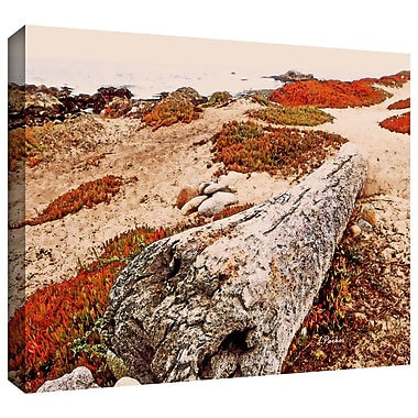 ArtWall 'Log on Pebble Beach' by Linda Parker Photographic Print on Wrapped Canvas; 24'' H x 16'' W