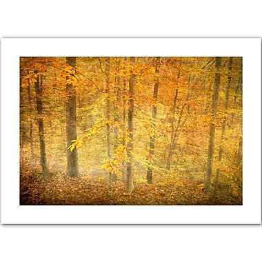 ArtWall Lost in Autumn' by Antonio Raggio Photographic Print on Rolled Canvas; 36'' H x 52'' W