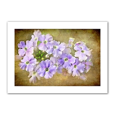ArtWall Shades of Violet' by Antonio Raggio Photographic Print on Rolled Canvas; 28'' H x 40'' W