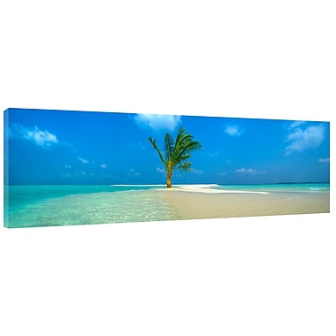 Colossal Images One Palm Island Photographic Print on Wrapped Canvas