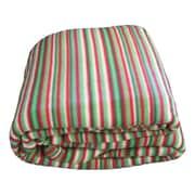 DaDa Bedding Striped Polar Blanket; Full