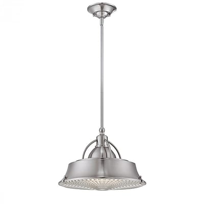 Quoizel CDY2814BN Incandescent Pendant, Brushed Nickel