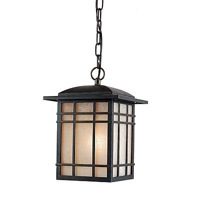 Quoizel HC1909IBFL Imperial Bronze Hanging Lantern, CFL