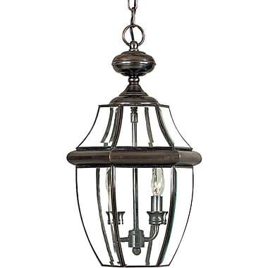 Quoizel NY1178AC Incandescent Hanging Lantern, Aged Copper