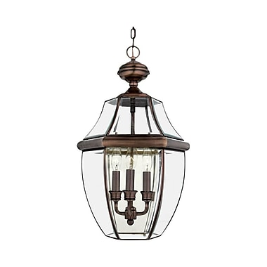 Quoizel NY1179AC Incandescent Hanging Lantern, Aged Copper