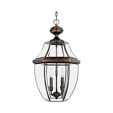 Quoizel NY1180AC Incandescent Hanging Lantern, Aged Copper