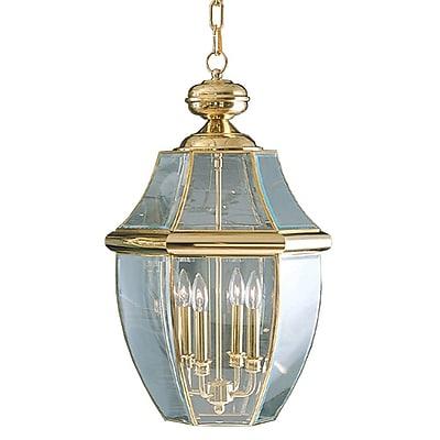 Quoizel NY1180B Incandescent Hanging Lantern, Polished Brass