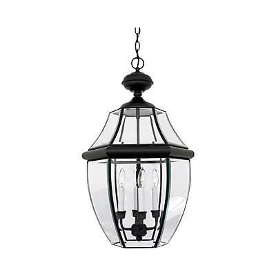 Quoizel NY1180K Incandescent Hanging Lantern, Mystic Black