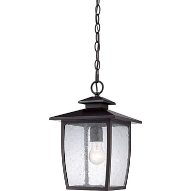 Quoizel BRY1909PN Palladian Bronze Hanging Lantern, Incandescent