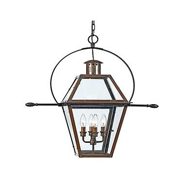 Quoizel RO1914AC Incandescent Hanging Lantern, Aged Copper