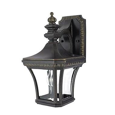Quoizel DE8958IBFL Imperial Bronze Wall Lantern, CFL
