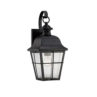 Quoizel MHE8406KFL Mystic Black Wall Lantern, CFL