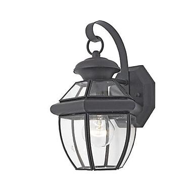 Quoizel NY8315KFL CFL Wall Lantern, Mystic Black