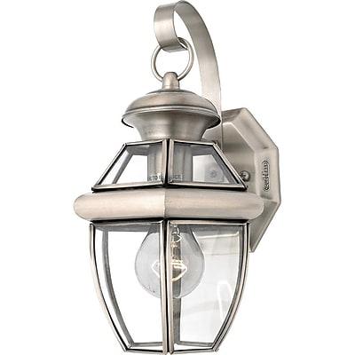 Quoizel NY8315PFL CFL Wall Lantern, Pewter