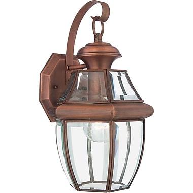 Quoizel NY8316ACFL CFL Wall Lantern, Aged Copper