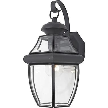 Quoizel NY8316KFL CFL Wall Lantern, Mystic Black
