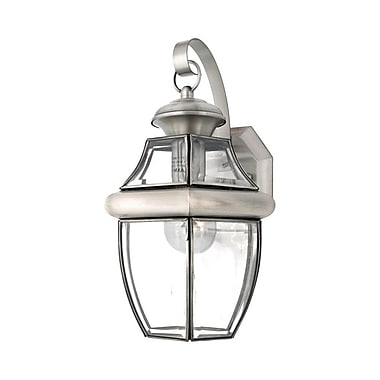 Quoizel NY8316P Incandescent Wall Lantern, Pewter