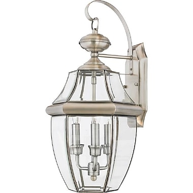 Quoizel NY8318P Incandescent Wall Lantern, Pewter